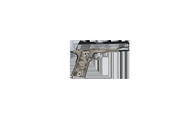 ACP C2 pistol
