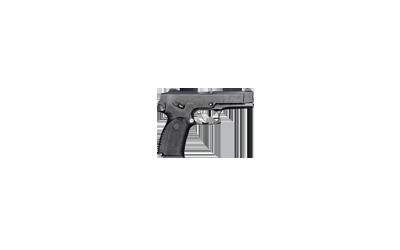 Rook 40 pistol